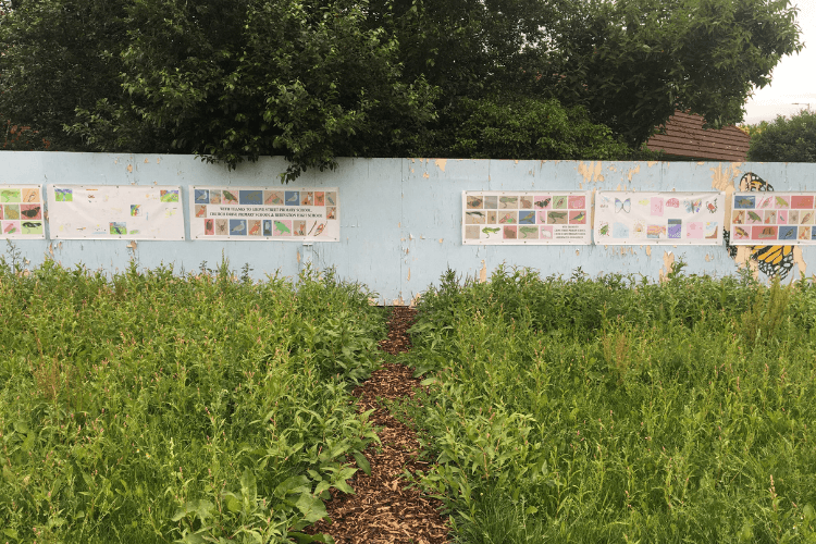 Picture of drawings and artwork displayed on some fencing. A new created bark path centrally leads up the artwork.