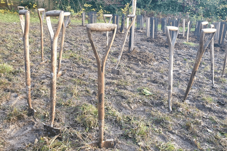 Spades in the ground
