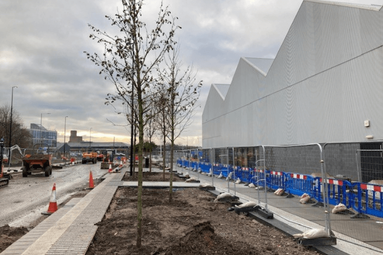 View looking down Tower Road, next to Wirral Metropolitan College with new trees planted.